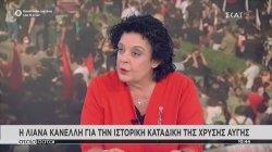 Λιάνα Κανέλλη για Χρυσή Αυγή: Υπάρχει μια σιωπηρή ενοχή που μετρήθηκε σε 450.000