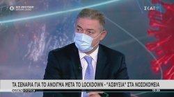 Βασιλακόπουλος: Επικίνδυνη η μετακίνηση από νομό σε νομό για τα Χριστούγεννα