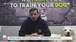 Νίκος Ζαδές - Τραγουδιστής και εκπαιδευτής σκύλων