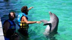 Πούντα Κάνα και δελφίνια για τους Μπλε