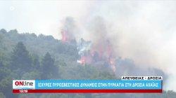 Ισχυρές πυροσβεστικές δυνάμεις στην πυρκαγιά στη Δροσιά Αχαΐας