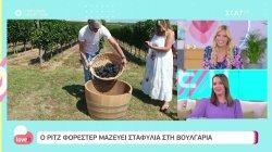 Ο Ρίτζ Φόρεστερ μαζεύει σταφύλια στη Βουλγαρία