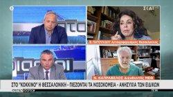 Στο κόκκινο η Θεσσαλονίκη - Πιέζονται τα νοσοκομεία - Ανησυχία των ειδικών