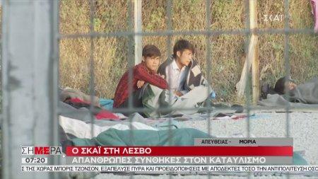 Σήμερα   Ο ΣΚΑΪ στη Λέσβο - Απάνθρωπες συνθήκες στον καταυλισμό   03/09/2019