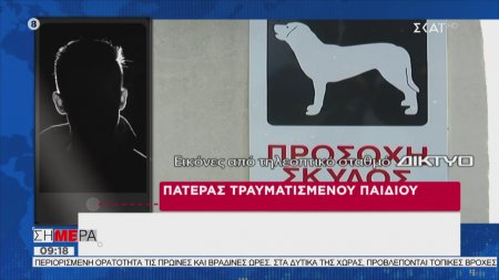 Σήμερα   Συγκλονίζει η περιγραφή του πατέρα του παιδιού που δέχθηκε την επίθεση σκυλιών   15/11/2019
