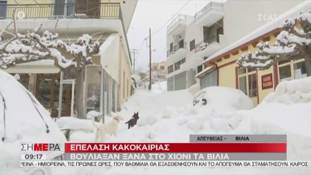 Επέλαση της κακοκαιρίας - Βούλιαξαν ξανά στο χιόνι τα Βίλια