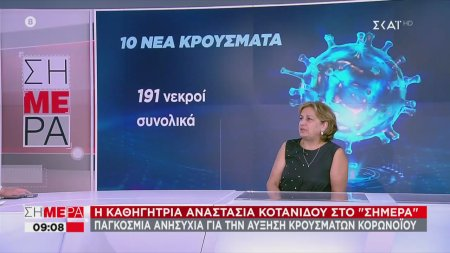 Κοτανίδου: Υπάρχουν ακόμη και γιατροί που πιστεύουν ότι δεν υπάρχει ο κορωνοϊός | 29/06/2020