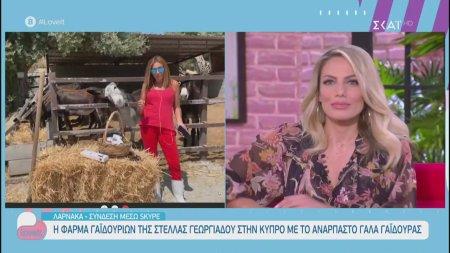 Η φάρμα γαϊδουριών της Στέλλας Γεωργιάδου στην Κύπρο