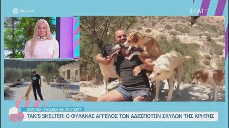 Ο φύλακας άγγελος των αδέσποτων σκυλιών της Κρήτης