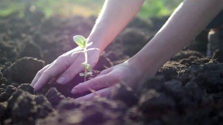 Ο πλανήτης έχει τη δύναμη να θεραπευτεί. Αρκεί να τον βοηθήσουμε!