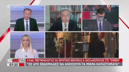 Βασιλακόπουλος: Να ανοίξουν μικρά μαγαζιά σε 2 βδομάδες