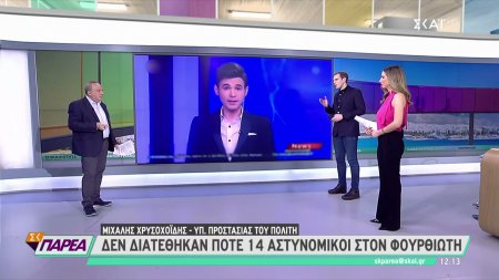 Μ. Χρυσοχοΐδης: Δεν διατέθηκαν ποτέ 14 αστυνομικοί στον Φουρθιώτη
