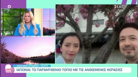 Ιαπωνία: Το παραμυθένιο τοπίο με τις ανθισμένες κερασιές