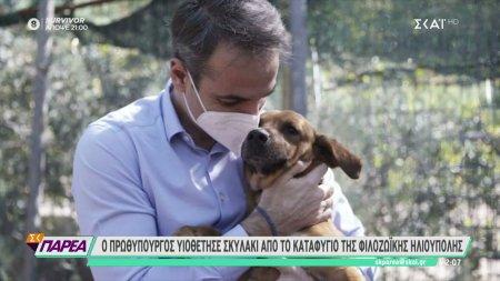 Ο πρωθυπουργός υιοθέτησε σκυλάκι από το καταφύγιο της φιλοζωικής Ηλιούπολης