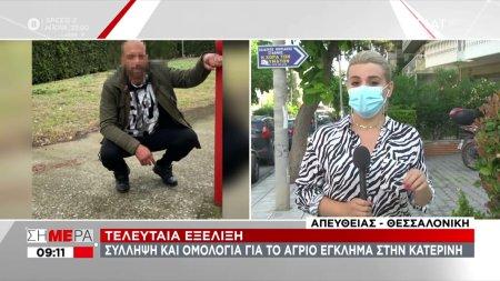 Κατερίνη: Συνελήφθη ο δράστης της άγριας δολοφονίας -Οι ανατριχιαστικές λεπτομέρειες που ομολόγησε