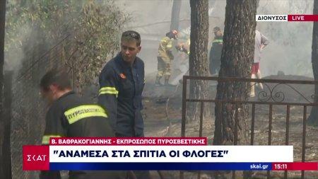 Εκπρόσωπος Πυροσβεστικής Β. Βαθρακογιάννης: