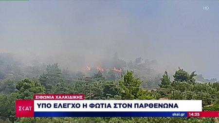 Τρία μέτωπα φωτιάς σε Ωροπό, Κεφαλλονιά και Σιθωνία Χαλκιδικής
