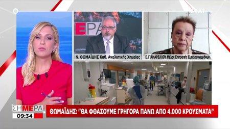 Θωμαΐδης: Το νέο κύμα είναι πολύ επιθετικό-Ραγδαία αύξηση στην Αττική