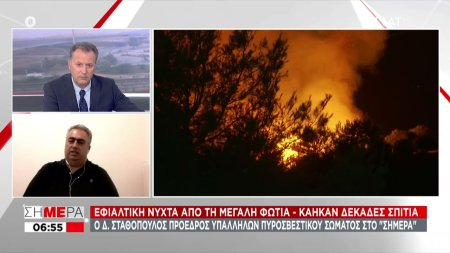 Ο Πρόεδρος Υπαλλήλων Πυροσβεστικού Σώματος Δ. Σταθόπουλος στο