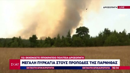 Δήμαρχος Αχαρνών σε ΣΚΑΪ: Σε απόσταση αναπνοής από τα βασιλικά ανάκτορα η πυρκαγιά